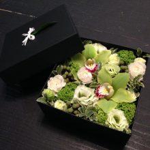 BOX 01 ホワイト・パステル 5000円税抜